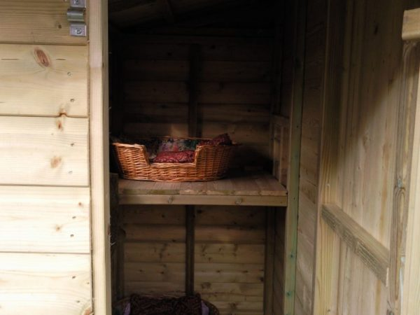 Midville Cattery Inside